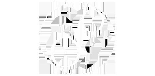 Diana Design - Logo
